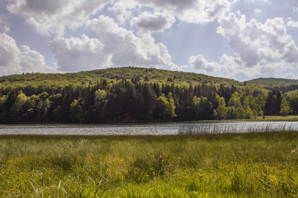 Lacul 3 ape Picnic in natura